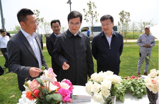 市委书记杨省世调研东海富民增收工作